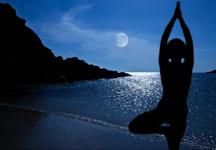 moon_salutation_L copy